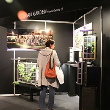 Construction of vertical gardens using modules To incorporate a vertical garden into your business