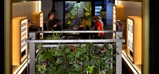 Los 10 jardines verticales mas hermosos
