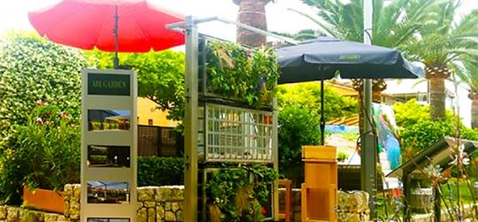 How to design a vertical garden