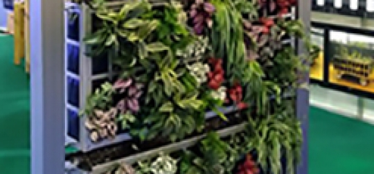 Vertical Gardens Designs, Plants and Tips
