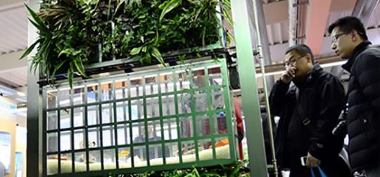 Cuidados de un jardin vertical