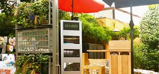 comment concevoir un jardin vertical