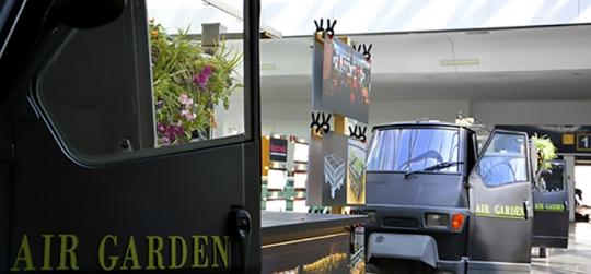 Innovamos con plantas para hacer una arquitectura mas sostenible
