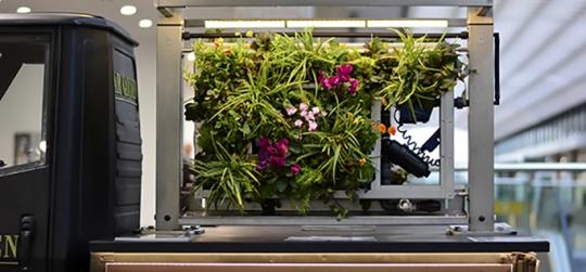 Innovacion en el sector de los jardines verticales, aportando una solucion nueva en muros verdes