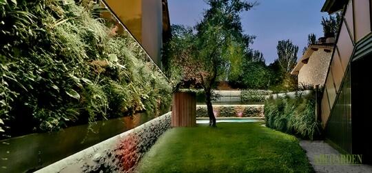 Diseño de jardines verticales en fachadas, muros, terrazas, interiores… que tu imaginación no tenga límites.