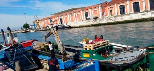 Air Garden presenta en la Bienal de Arquitectura de Venecia.