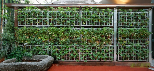 Design, implementation and maintenance of vertical gardens