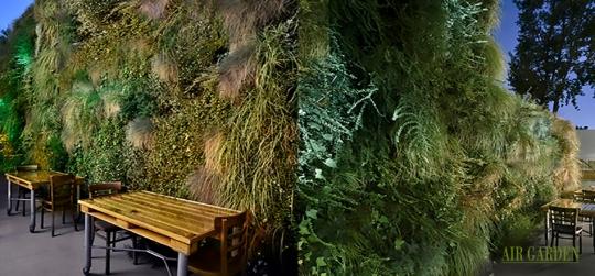 Selección de plantas para jardines verticales
