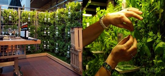 Sistema innovador de jardines verticales, huertos urbanos y sistemas de goteo, muy decorativo.