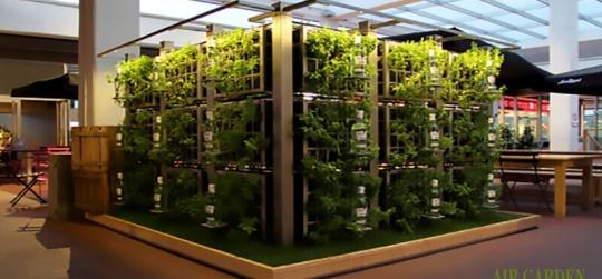 Soluciones de última generación para crear separaciones de tipo vegetal