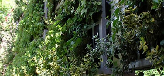 Vallas para jardines con intimidad