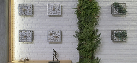 Vertical gardens a decorative option for your home