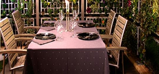 Los jardines verticales animan los patios y terrazas