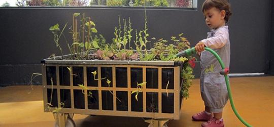 mesas de cultivo para cultivar tu propio huerto urbano