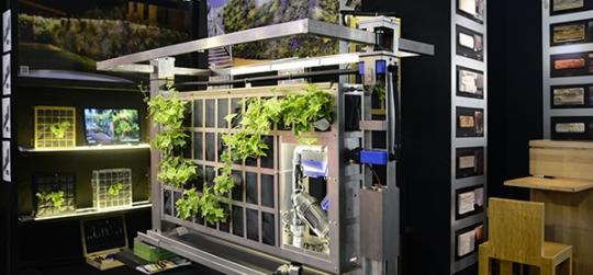 Entornos saludables, ecologia urbana