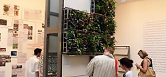 jardineria vertical