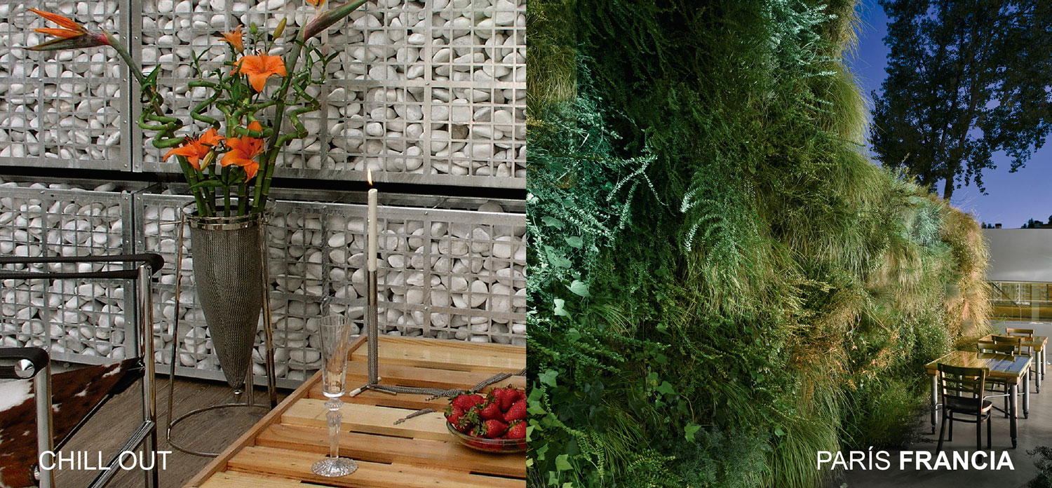 Design and plantation of a vertical garden.