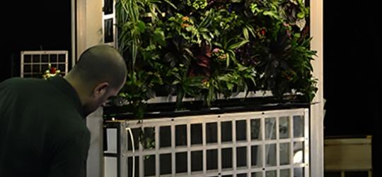 système innovant de jardins verticaux et des jardins urbains