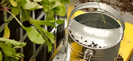 Cursos de agricultura ecologica en Bioeskola BBK