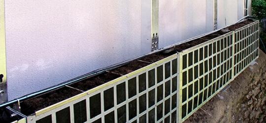 Diseño de jardines verticales, muros y fachadas con vida