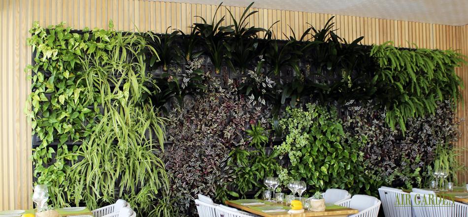 incorporar_jardin_vertica_bar_restaurante