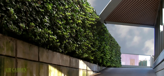Design of vertical gardens, walls and facades with life