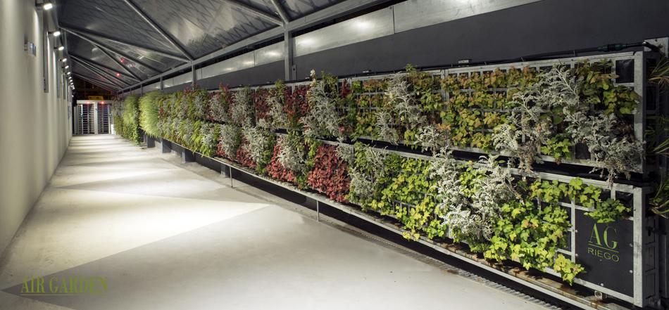 jardin vertical en empresas y locales