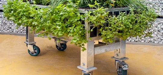 GROWING URBAN GARDEN TABLE