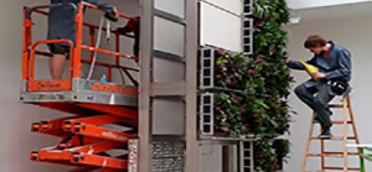 Los jardines verticales son signos de una arquitectura innovadora