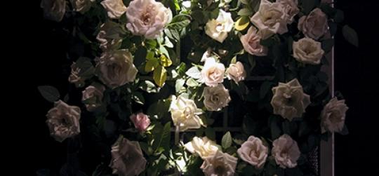 Jardin vertical seguro y resistente