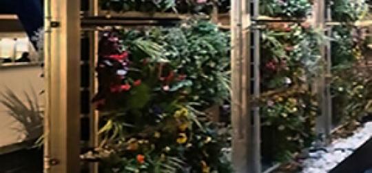 sistema profesional de jardines verticales