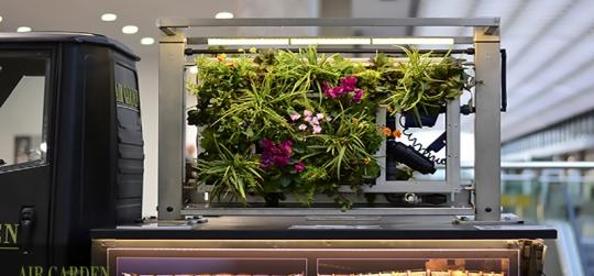 construccion de jardines verticales mediante modulos