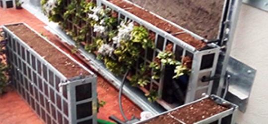 La belleza de los jardines verticales