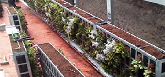 Jardin vertical de interior con riego automático
