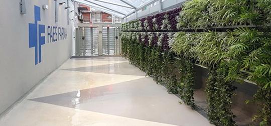 deas sorprendentes para hacer jardines verticales en casa