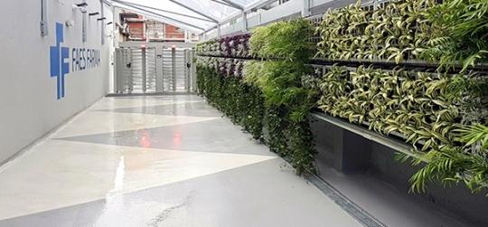 ideas geniales para tener un jardín vertical en casa