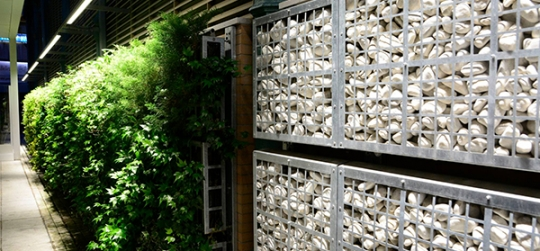 mercado palencia jardin vertical
