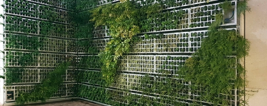 Añadir_un nuevo_espíritu verde_edificio