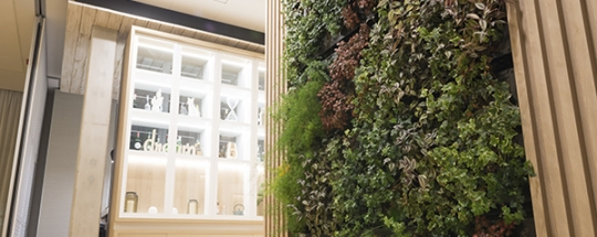 JARDIN_VERTICAL_HALL_INTERIOR_HOTEL_BARCELONA